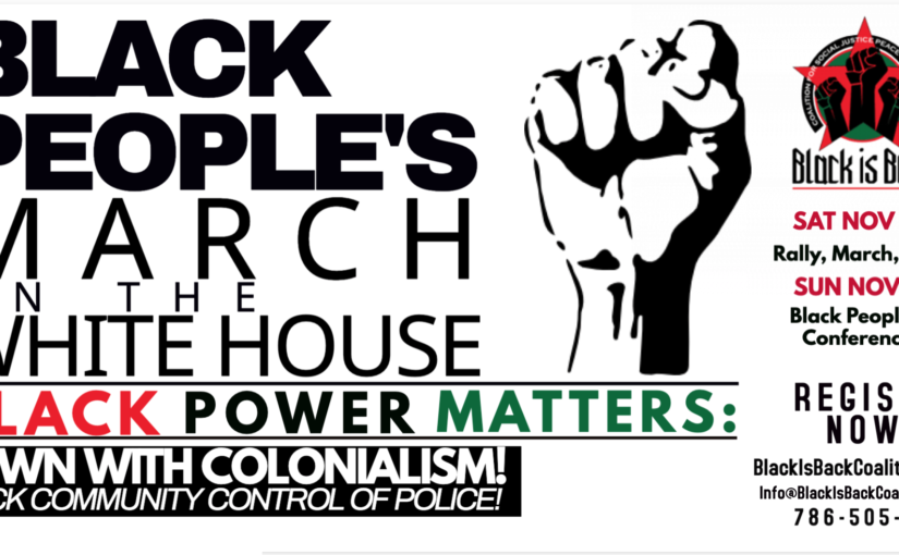 "Donate to the ""Black Power Matters"" march on the white house!"